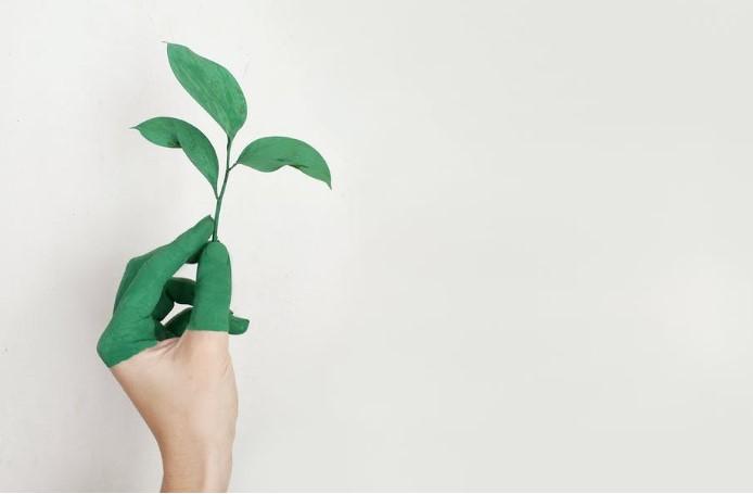 En este momento estás viendo La importancia de las certificaciones energéticas